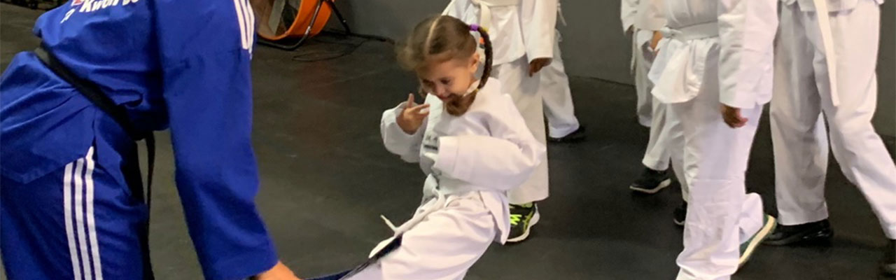 tigers kindergarten martial arts taekwondo